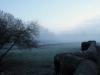 Cookham Moor