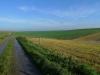 Near Avebury