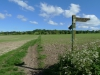Clarendon Way