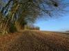 Walk to Dunstable