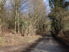Near Flackwell Heath