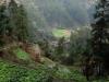 Lange Miao village