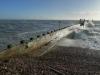 Rye Harbour 2014