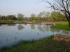 Xixi Wetland