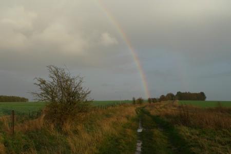 rainbow_scale