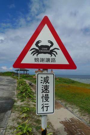 crab_scale