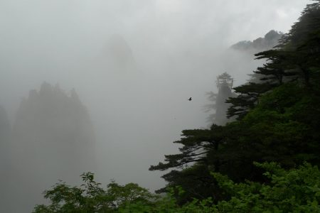 mist_scale